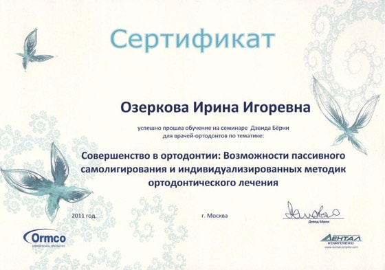Сертификат Озерковой И. И. об участии в семинаре Дэвида Бёрни