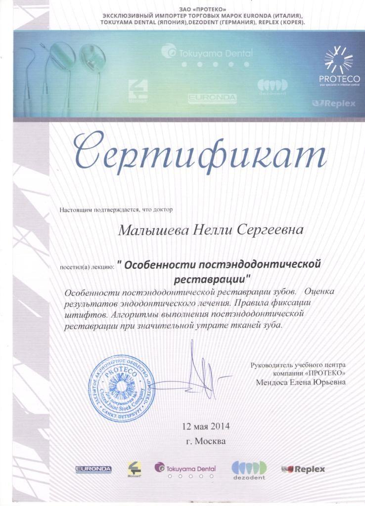 Сертификат Малышевой Н. С. о посещении мастер-класса