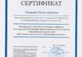 Сертификат Малышевой Н. С. о прохождении практического курса по машинной обработке и пломбированию корневого канала зуба