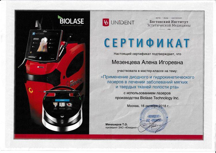 Сертификат Мезенцевой А. И об участии в мастер-классе