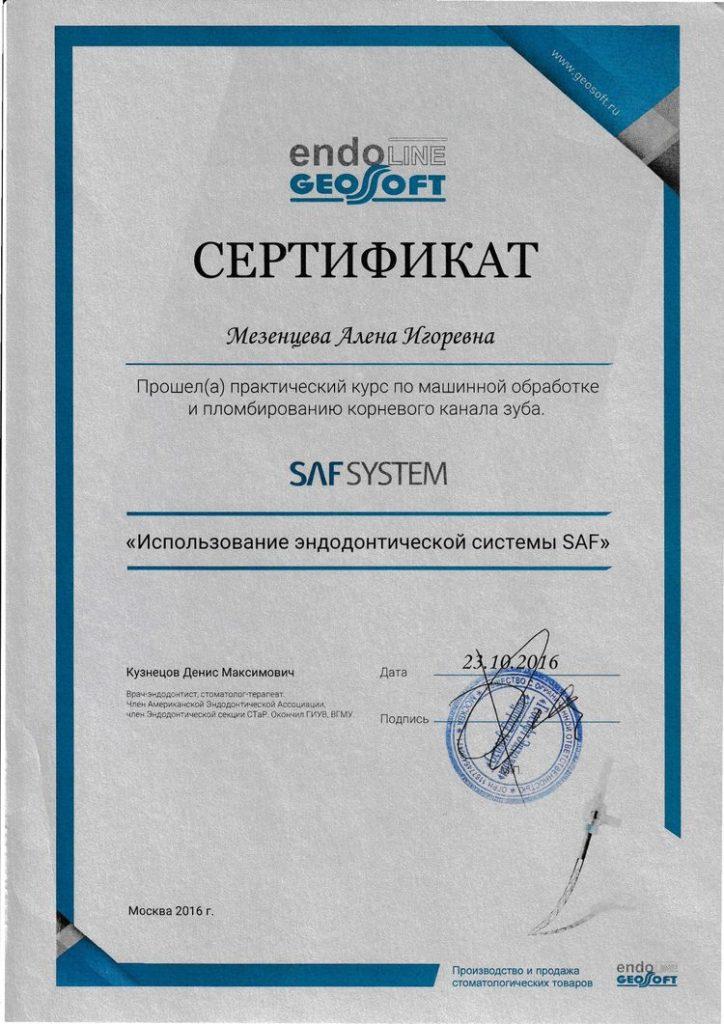 Сертификат Мезенцевой А. И об участии в семинаре