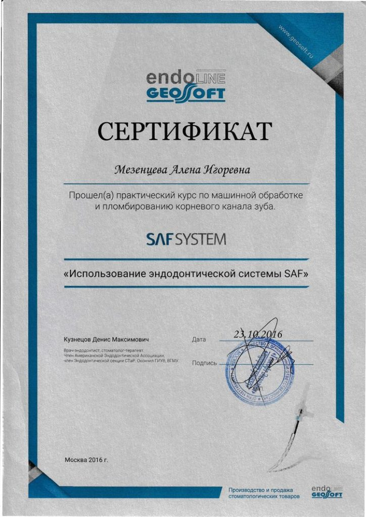 Sertificate of participation Mezentseva A. in the practical course about SAF system