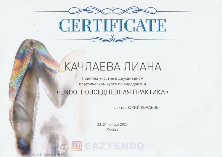 Сертификат об участии Качлаевой Л.М. в курсе по эндодонтии